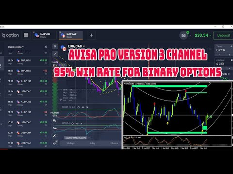 How to setup metatrader for binary options
