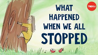 What happened when we all stopped narrated by Jane Goodall