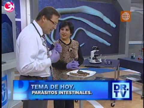 ¿cómo se llama el médico que trata los parasitos