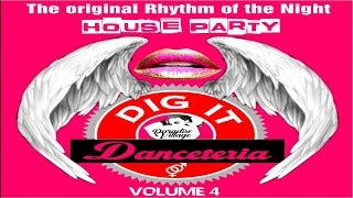 Danceteria Dig-It - Volume 4 - The original rhythm of the night - House Party