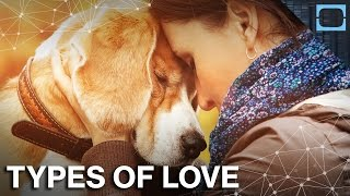 Can You Love Your Dog More Than Your Baby?