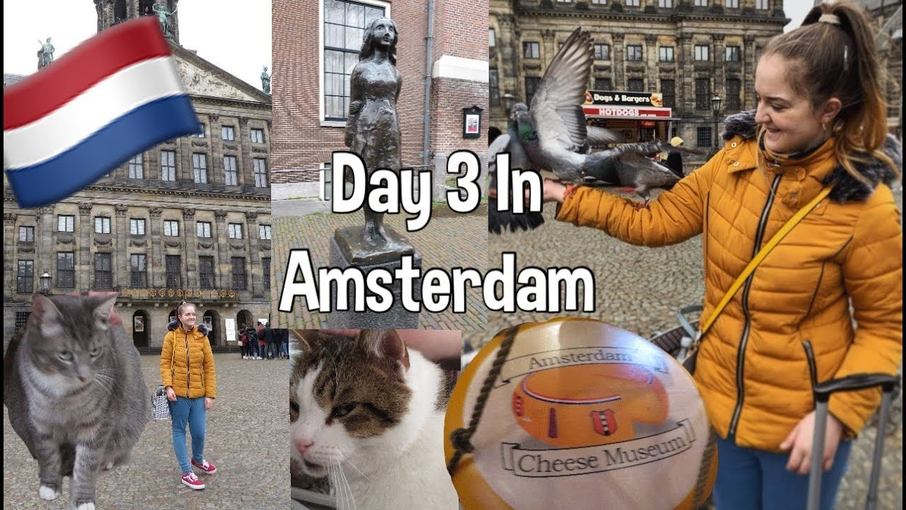Day 3 In Amsterdam - Cats everywhere and The Anne Frank House