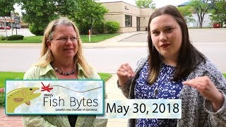 Download Video Spearfish Chamber Video Fish Bytes May 30, 2018 MP3 3GP MP4
