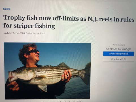 New Striped Bass Regulations Explained. Our Thoughts.
