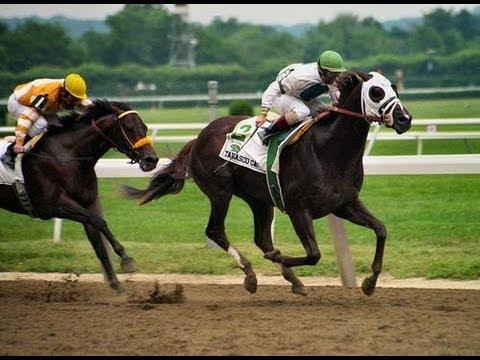 1994 Belmont Stakes - Tabasco Cat