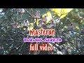 Masteran Burung Gereja Full  Mp3 - Mp4 Download