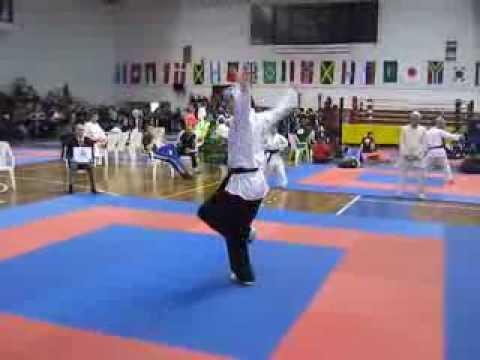 World Championships IAKSA 2013 Soft style / Wushu dr Srdjan Brkovic - Serbia