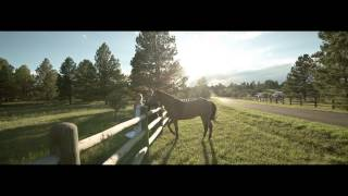 Amazing Wedding Movie - Arrow C Ranch - Colorado Ranch Wedding Venue