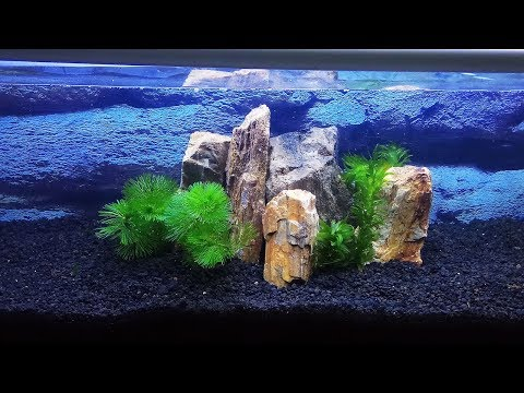 Setting Up Under Gravel Filter | Just An Experiment Of Old Aquarium Filtration