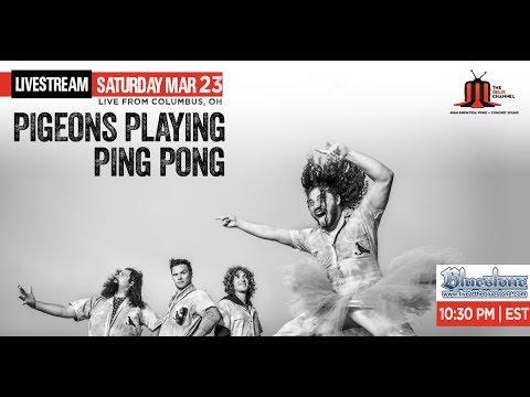 Pigeons Playing Ping Pong :: 3/23/19 | 10:30PM ET :: Bluestone :: Sneak Peek | Set I