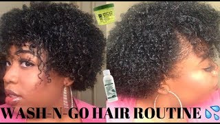 MY WASH-N-GO HAIR ROUTINE 4a, 4b, 4c friendly