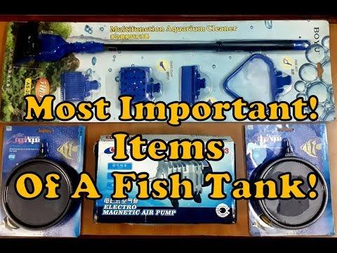 Silver Arowana & Oscar Fish Tank Utilities - Air Pump, Air Stone, Multi Function Aquarium Cleaner