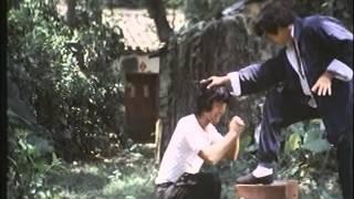 Shaolin Demir Yumruklar Turkce Dublaj Tek Parça
