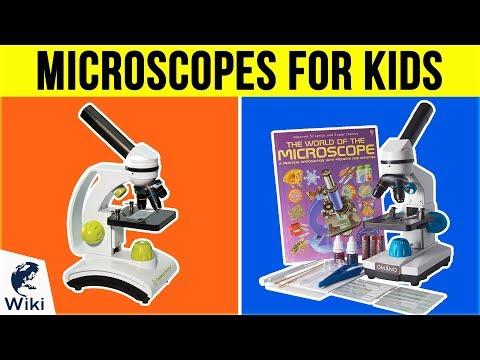 10 Best Microscopes For Kids 2019