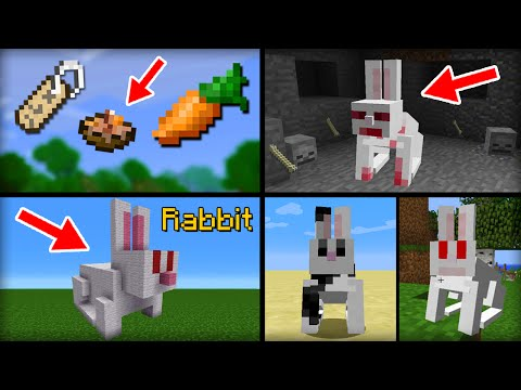 ✔ Minecraft: 15 Things You Didn't Know About The Rabbit