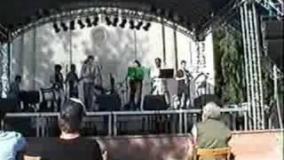 Buena Vista Antisocial Club (BVASC) - Pastime Paradise
