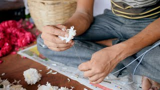 A street side vendor making flower garlands by putting white flowers in a thread