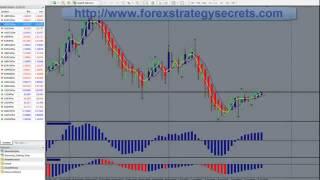 Xforex - From Beginning Trader To Winning Trader In 4 Months_002