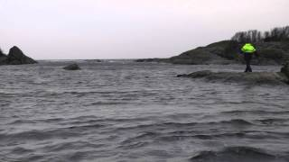 Voice of nature / głos natury - Langesund, Norway
