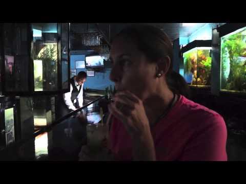 End of Our Detox in Havana