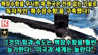 핵잠수함을 무시한 채 한국은 전례 없는 기술로 독자적인…