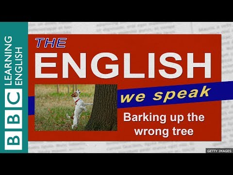 Barking up the wrong tree: The English We Speak