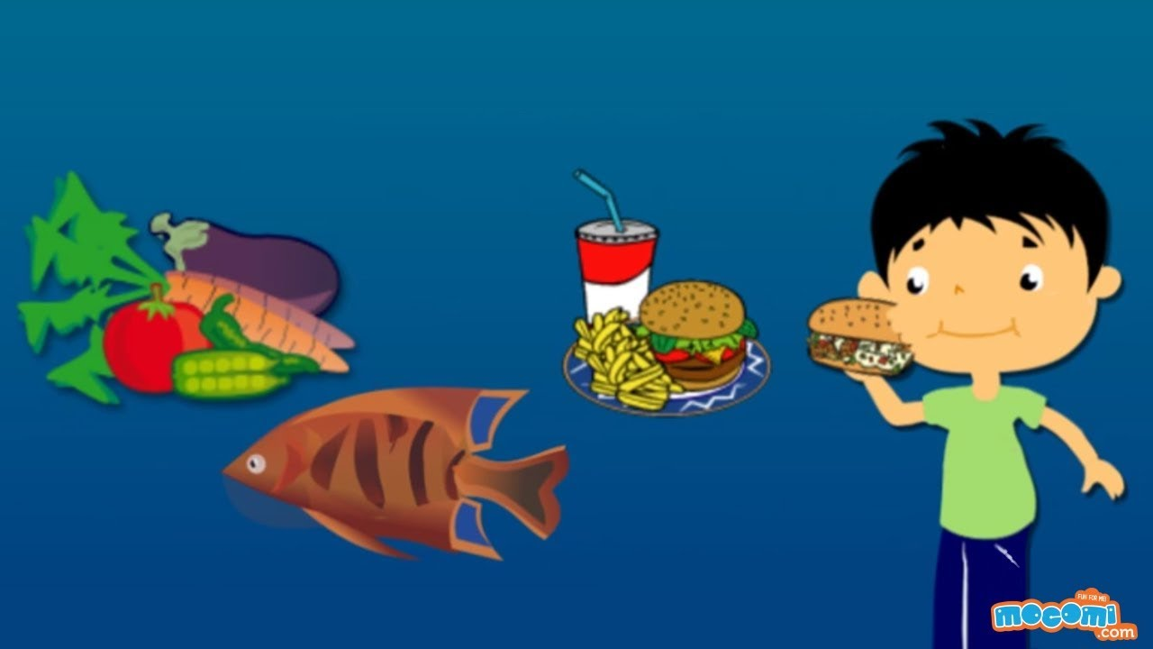 Where does Food come from? Facts and Fiction - Science for Kids |  Educational Videos by Mocomi