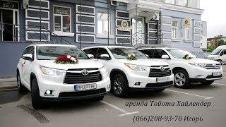 Свадьба 2017,выездная церемония в Казачке,г.Сумы,свадебная видео сьемка в HDV