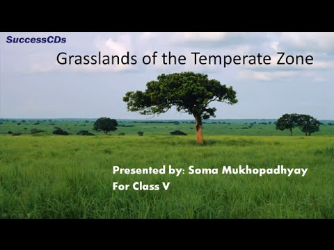 temperate grassland land features The grasslands biome can be divided up into the temperate grasslands and tropical grasslands  the grassland biome plays an important role in human farming and food.