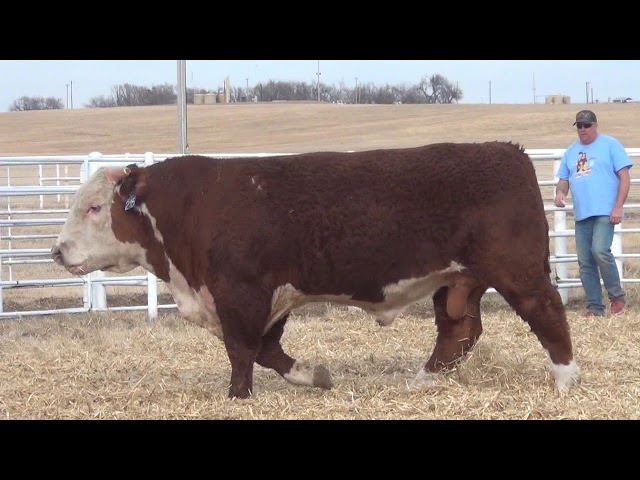 Express Ranches Lot 215