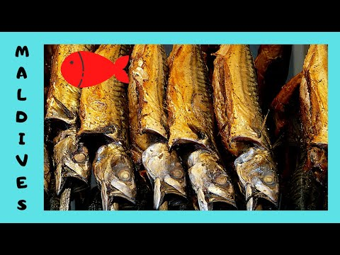 THE MALDIVES, the dry Fish Market in Malé (Indian Ocean)