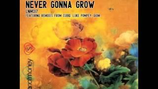 George Holliday - Never Gonna Grow (Original Mix)