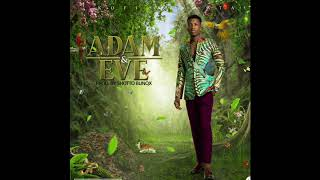 Kofi Kinaata - Adam & Eve (Audio Slide)