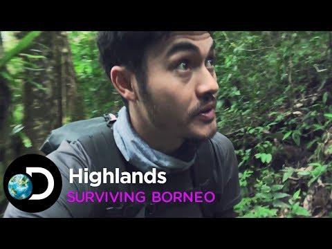 Highlands | Surviving Borneo