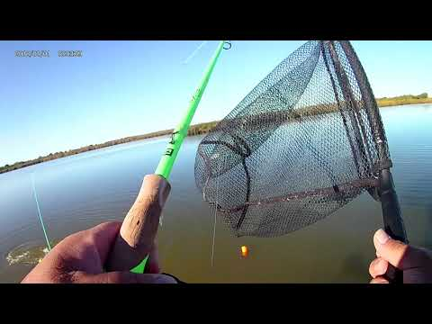 Port Lavaca Fishing