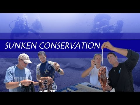"""Sunken Conservation"" Documentary, Offshore Florida Conservation Stories"