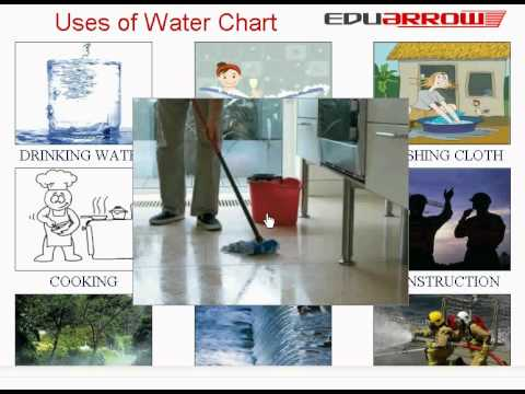 Uses of water chart youtube for Uses of soil in daily life