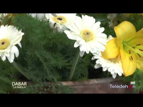 """Dabar """"La parola"""" - 5a Domenica di Pasqua - ANNO C"""