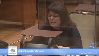 #EnVivo: La Legislatura trata el proyecto de Emergencia por Violencia de Género