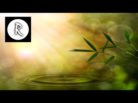 8 HOURS Beta Waves: ULTIMATE MEMORY | Deep Sleep Meditation,