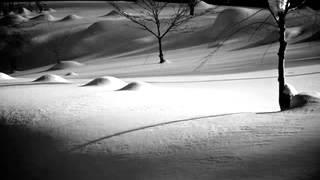 Aoneko No Torso - Ryuichi Sakamoto - Sheet Music