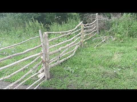 Купил 120 голов овец и огородил 6 га забором