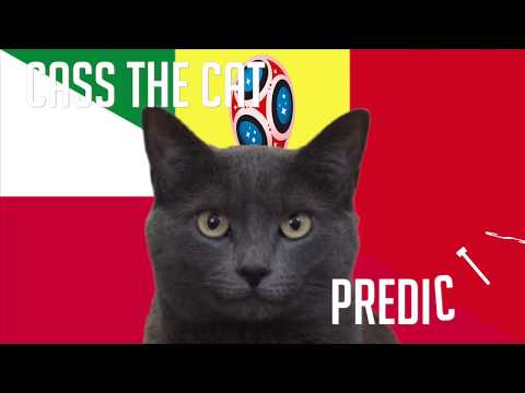 Poland vs Senegal | Group H | 2018 FIFA World Cup Cass the Cat Prediction
