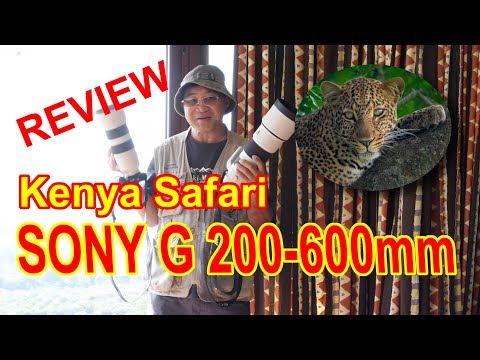 รีวิวเลนส์เทเลซูม Sony G 200 600mm F5.6-6.3 OSS