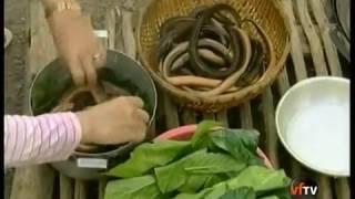 Phóng Sự Du Lịch   Món Ngon Quê Nhà   Tập 2 - Đặc Sản Miền Tây: Cà Mau, Hà Tiên, Phú Quốc