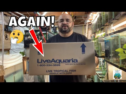 ANOTHER Live Aquaria Fish Unboxing DISASTER
