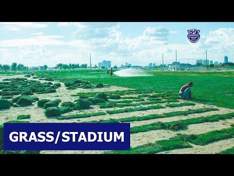 GRASS/STADIUM
