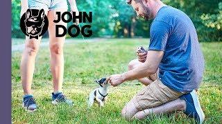 Strach przed obcymi - CASE STUDY - John Dog