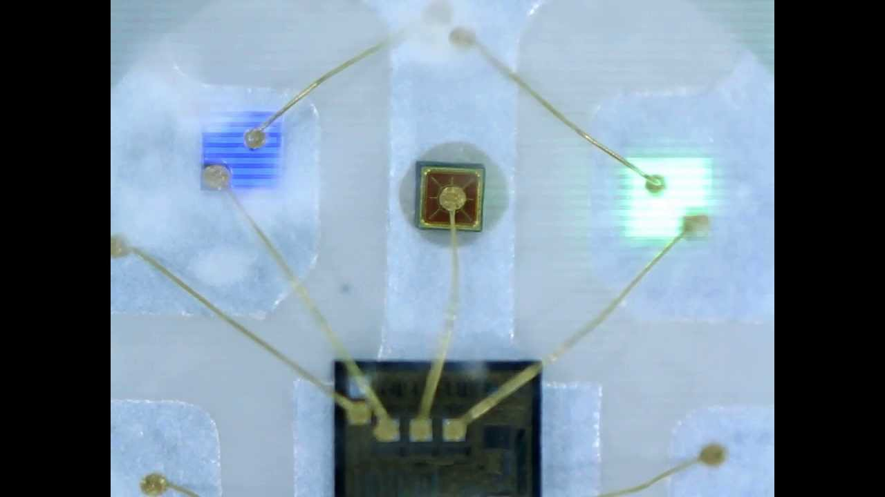 premium selection 60942 6a24f WS2812 Digital RGB LED Chip Under Microscope