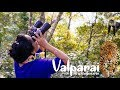 Briar Tea Bungalows Valparai | Wildlife Sighting | Tea Estate | Tripjodi Travel Video HD